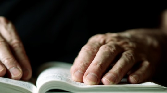 La fede è fidarsi di Dio - VIII domenica tempo ordinario