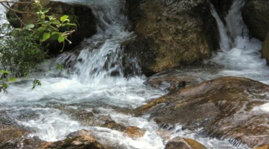 La fonte per chi ha sete d'amore - III domenica di Quaresima