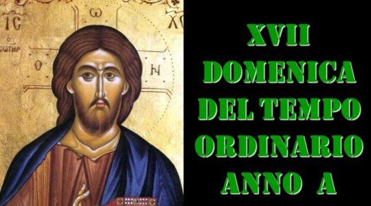 XVII domenica tempo ordinario Mt 13, 44-52