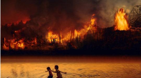 Amazzonia: il grido della terra, il grido dei poveri